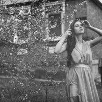 Весенний портрет) :: Вячеслав