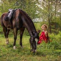 Конь :: Андрей Володин