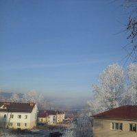 Морозное утро :: Надежда Малинкина