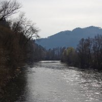 Река Мур. Австрия :: Andrad59 -----