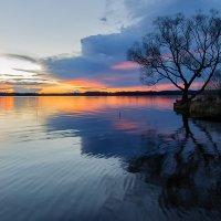 Весенний пейзаж :: Galina