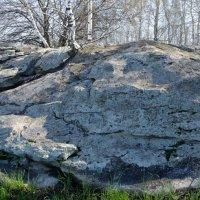 Синие камни :: Женя Лузгин
