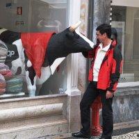 Красно-чёрно-белый поцелуй :: Виталий К