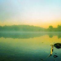 Туманное утро жаркого дня. :: Va-Dim ...