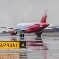 Заруливание на перрон A319 :: Валерий Смирнов