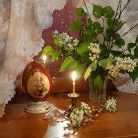 С Вербным воскресеньем! :: Тамара (st.tamara)