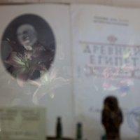 . :: Анастасия Алёшина