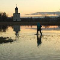 """""""Утреннее паломничество к Покрова-на-Нерли :: Александра"