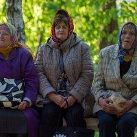 три девицы.... :: Ксения смирнова