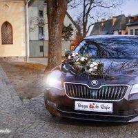 Samochodem do Raju :: Janusz Wrzesień