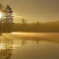Утренний просвет.... :: Юрий Цыплятников