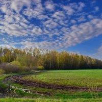 Весна... :: Валера39 Василевский.
