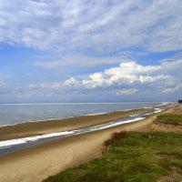 На берегу Обского моря  сходит лёд. :: Мила Бовкун