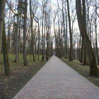 Весна в Царицыно. :: Александр Вуколов