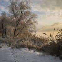 Зимний вечер :: Юрий Клишин