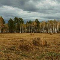 Уж небо осенью дышало... :: IURII