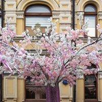 Весна на Кузнецком ! :: Константин Фролов