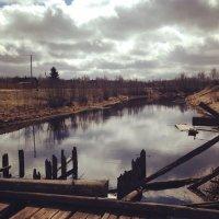 Старо-ладожский канал, деревня Загубье :: Olga Kovalski