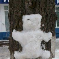 Обними дерево) :: Галина Бобкина