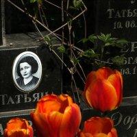 Memento mori.... :: Владимир Бровко