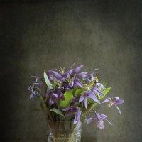 Таежные цветы :: Алина