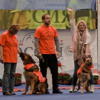 Подари собаке дом - 2 :: Nina Grishina