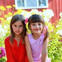 Маленькие принцессы :: Надежда Ратникова