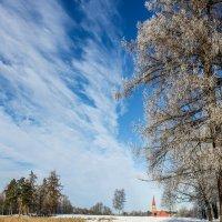 Прогулка по Приоратскому парку :: Алёнка Шапран