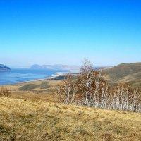 Вид на Красноярское море :: Любовь Иванова