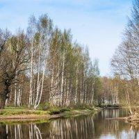 В парке весна 1 :: Виталий