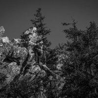 На Чёрной скале. :: Владимир Батурин