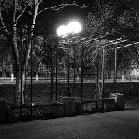 Ночь, улица, фонарь... :: Алексей Гусаров