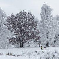 Заметает время снег :: Владимир Колесников