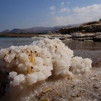 Кристаллы соли на Мертвом море :: Ирина