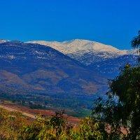 vit5 горы, Израиль :: Vitaly Faiv