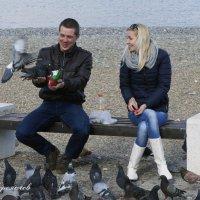 Двое и голуби :: Дмитрий Переяслов