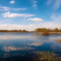 Отражения :: Виталий Федотов