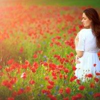 To feel the Beauty :: Ruslan Bolgov