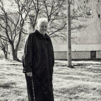 Утренняя прогулка. :: Анатолий Щербак