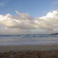 Море :: Вера Щукина