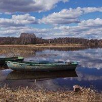 А я стою на берегу. :: Ирина Нафаня