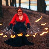 Укротительница огня :: Nina Zhafirova