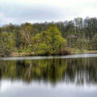 Тишина на озере :: Милешкин Владимир Алексеевич