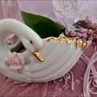 Белая лебедь этой весной :: Нина Корешкова