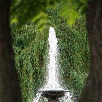 Городской фонтан :: Андрей Майоров