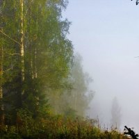 В распадке туман :: Сергей Чиняев
