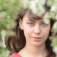 Весенний ветерок :: Вета Жаринова