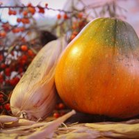 Овощные наброски :: Валерия Монахова
