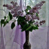Подарок для всех :: Нина Корешкова