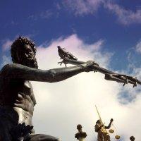 Нептун.. :: Эдвард Фогель